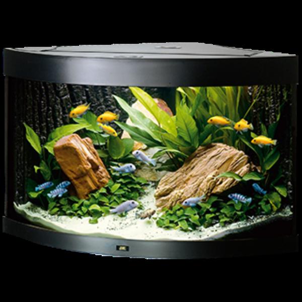 Picture for category Juwel glass aquarium